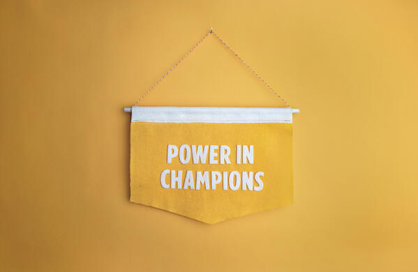 reasons why you should create a champion program for change management