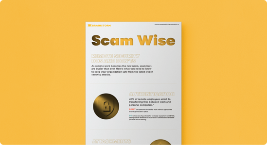 Scam Wise_Remote Security Dos and Don'ts ( Asset Page ) image